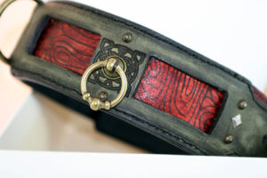 Red and green leather dog collar