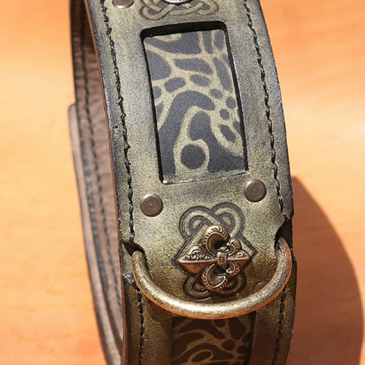 Green leather dog collar with brass patina fittings