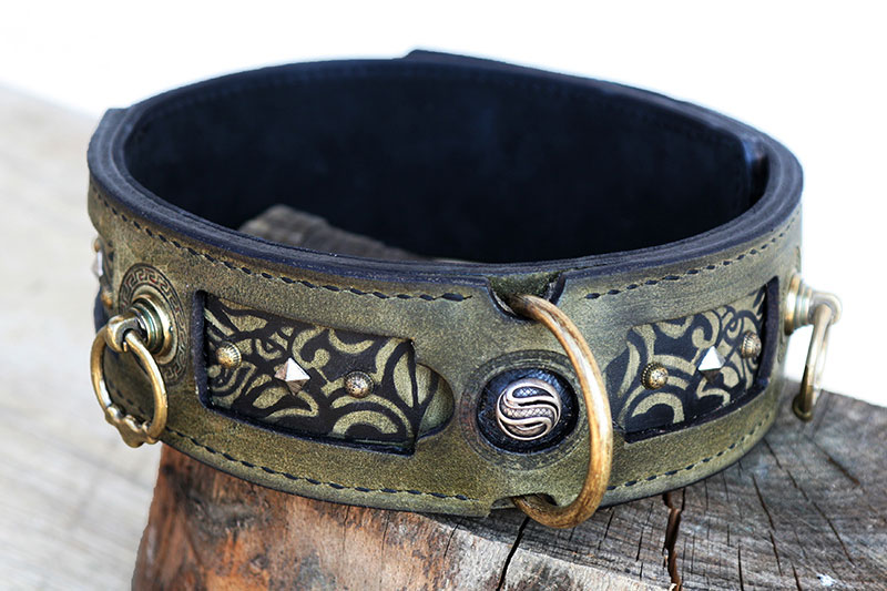 A17 leather dog collar closed buckle