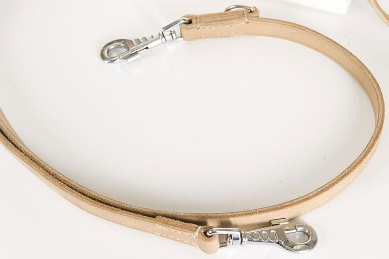 Dog leash two snap hooks
