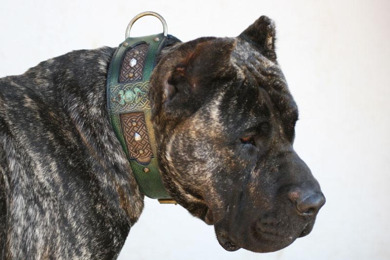 Workshop Sauri Emerald collar