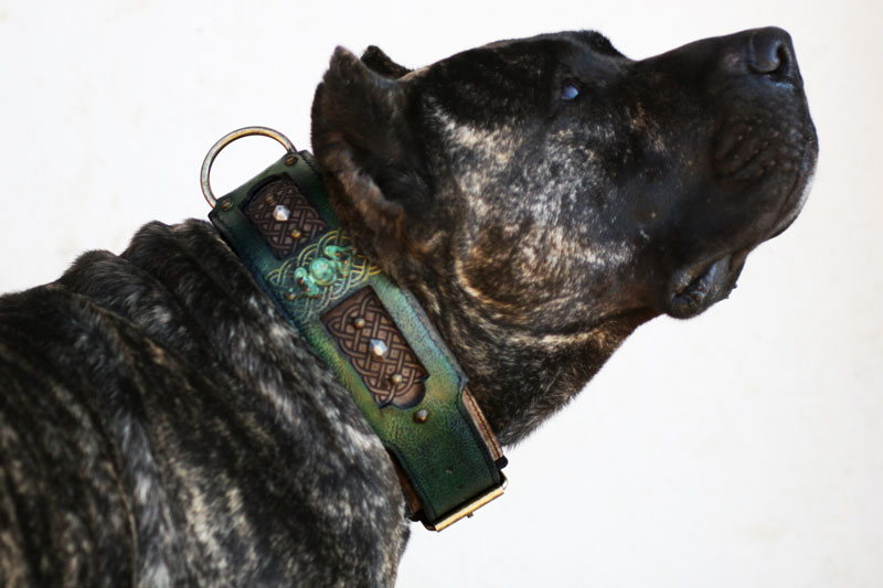 Workshop Sauri Emerald dog collar