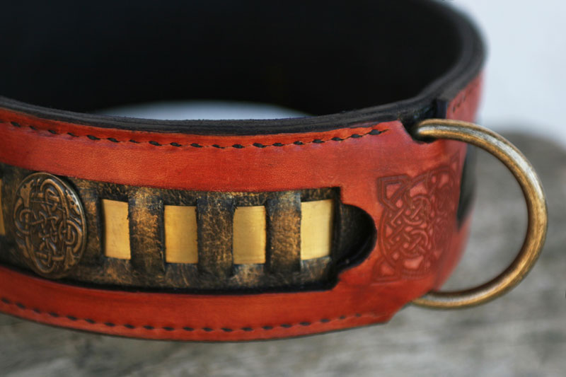 Caracal unique leather dog collar with brass trim by Workshop Sauri