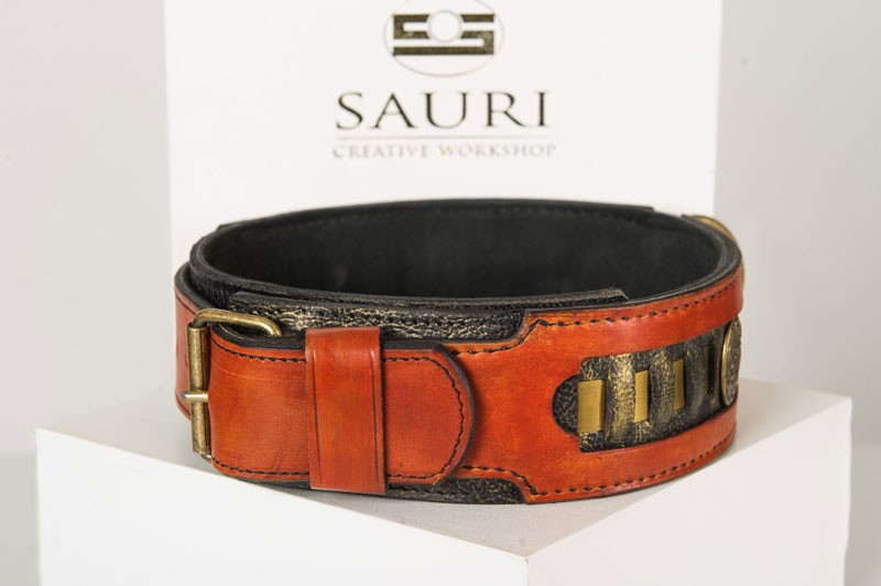 Caracal dog collar buckle and hand stitching