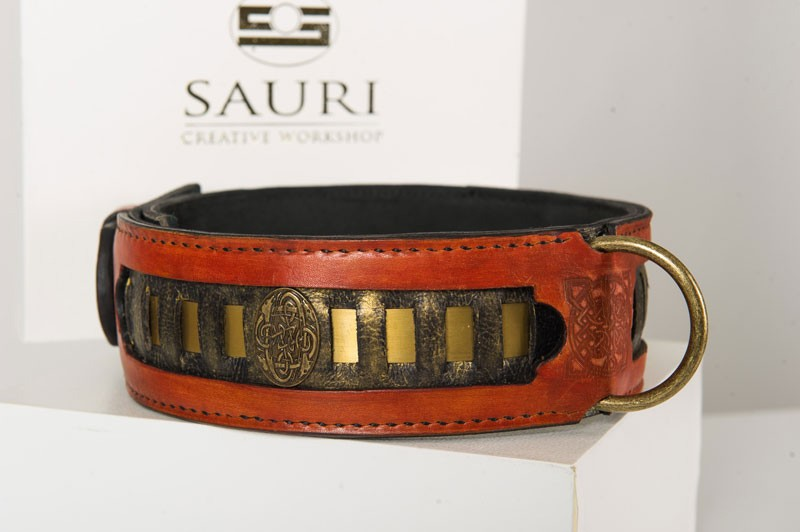 Caracal dog collar with ornamental rivets