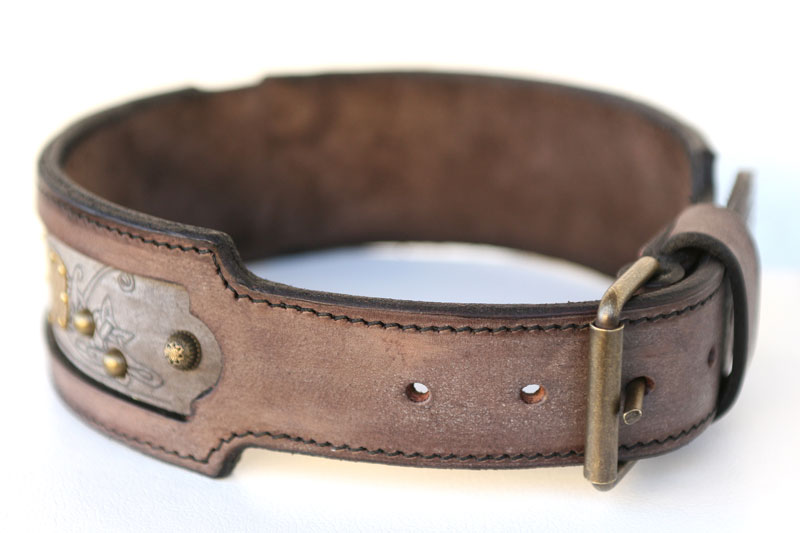 Kairos Dog Collar - Sauri Workshop