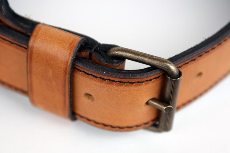 Shiraz Dog Collar Buckle Detail