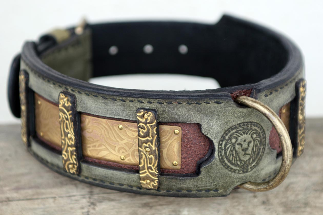 Dog Collars And Harnesses For Small Dogs