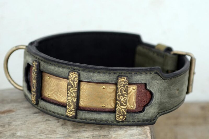 Tara mastiff dog collar leather and brass ornaments handmade by Workshop Sauri