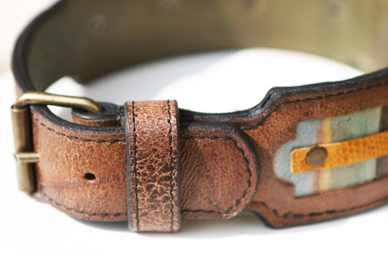 Workshop Sauri - Naga leather dog collar for medium sized dogs