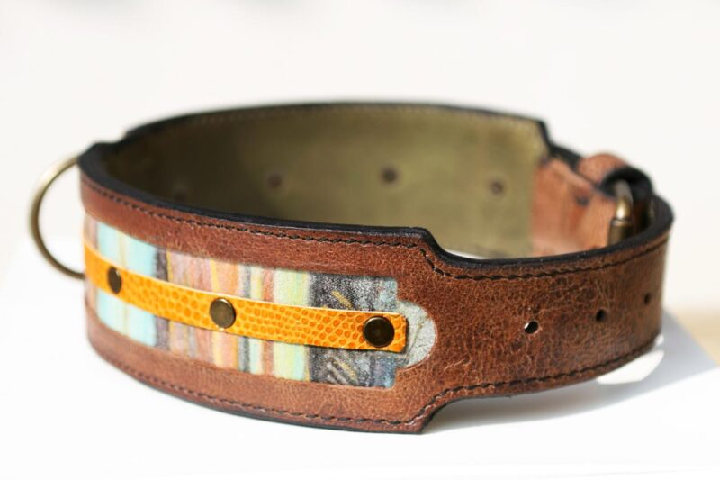 Workshop Sauri - Naga leather dog collar with the tapering end