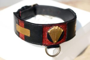 Workshop Sauri - Afghan hound dog collar