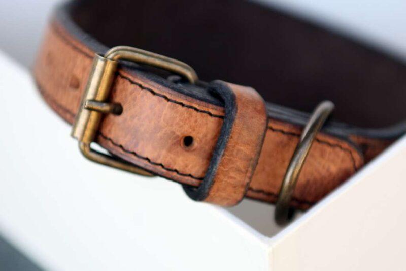 Workshop Sauri - Luangva greyhound collar buckle