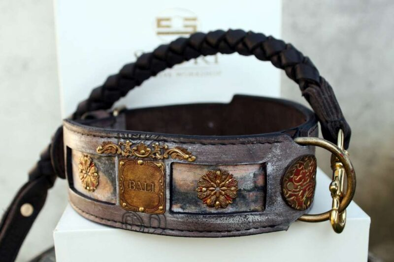 Bali - personalized dog collar and leash by Sauri
