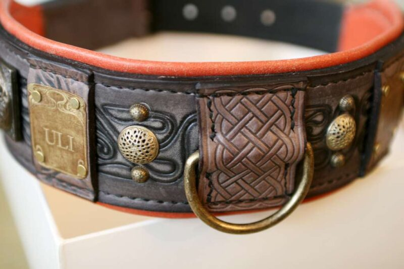 Unique dog collar with leather embossing by Workshop Sauri