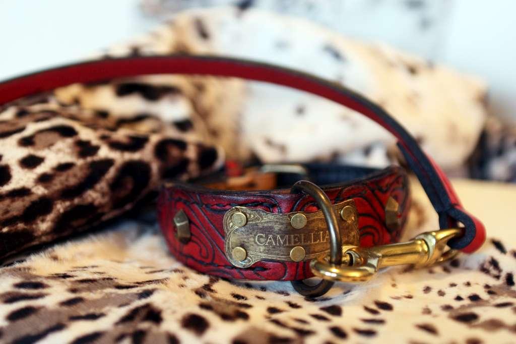 Personalized dog collar Camelia by Workshop Sauri
