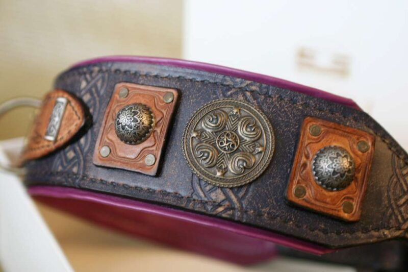 Richly ornamented leather dog collar by Workshop Sauri