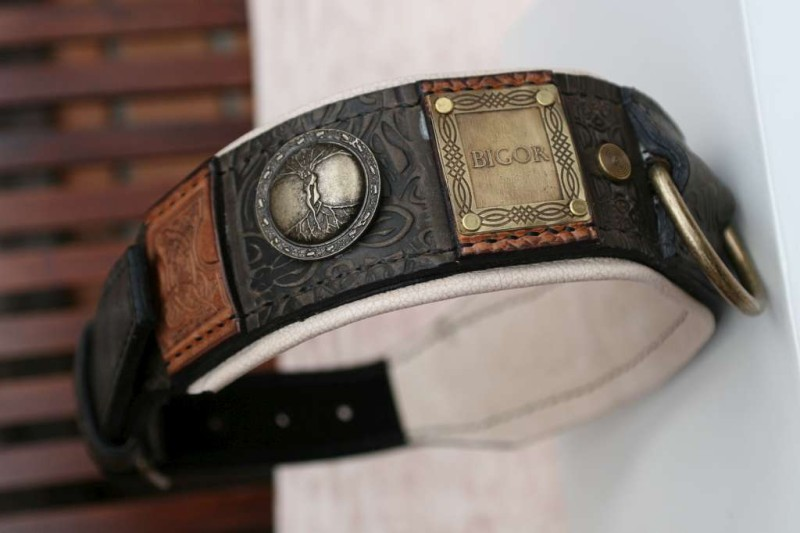 Imperial leather dog collar with nameplates