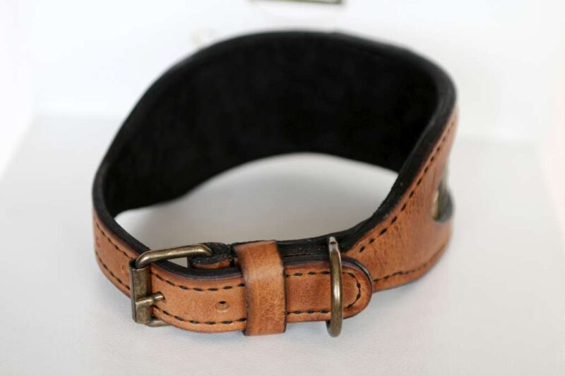 Tan leather dog collar handmade by Workshop Sauri