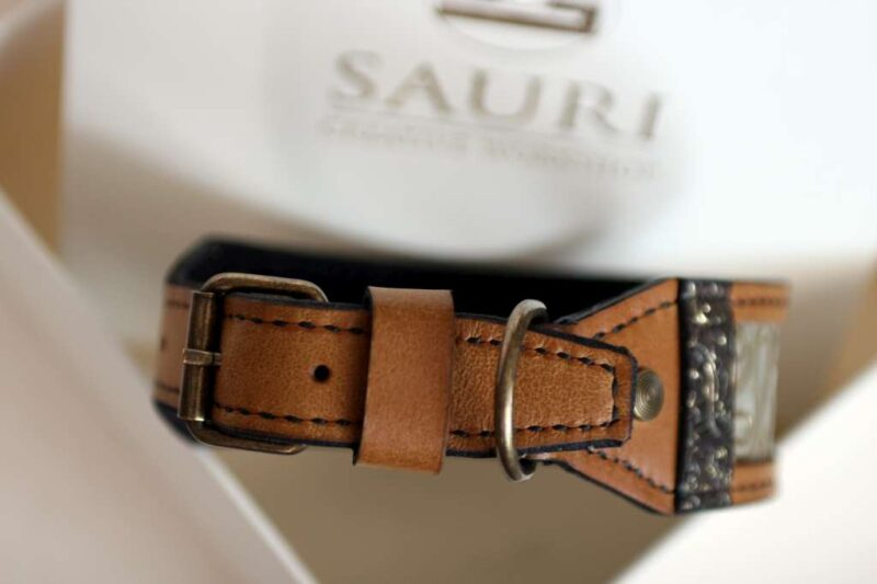 Leather dog collar Khepri handmade by Workshop Sauri