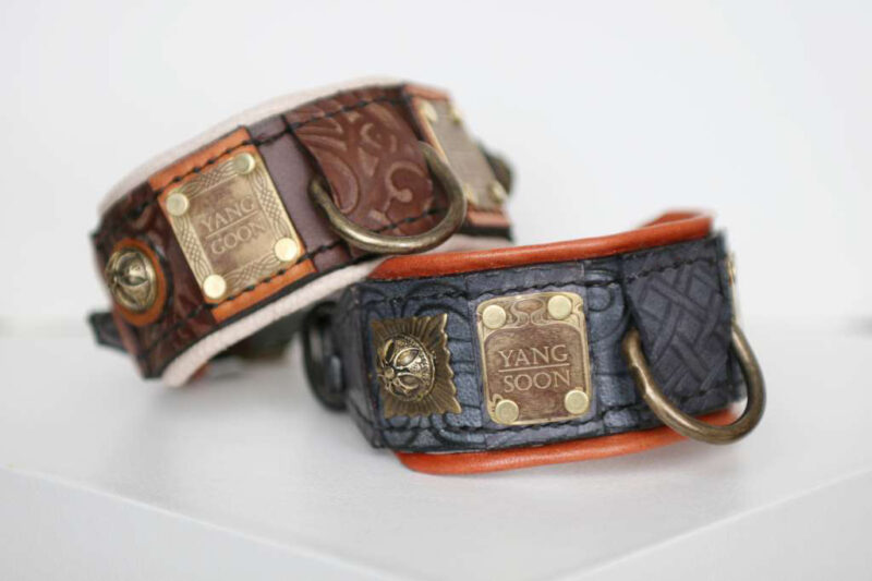 Unique dog ID tags collars by Workshop Sauri