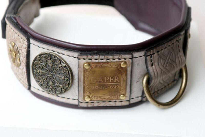Leather dog collar with nameplate hand crafted by Workshop Sauri