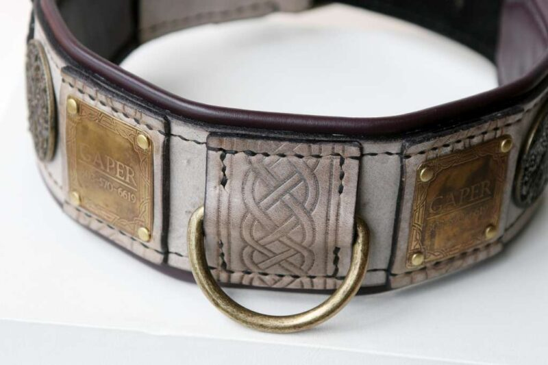 Leather dog collar with nameplate deering by Workshop Sauri