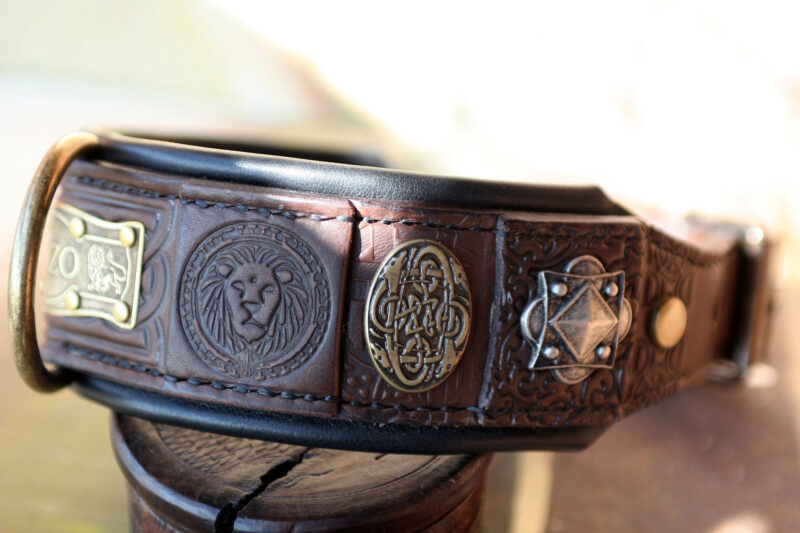 Custom embellished dog collar with lions by Workshop Sauri