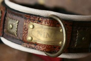 Custom made dog show collar with nameplate by Workshop Sauri