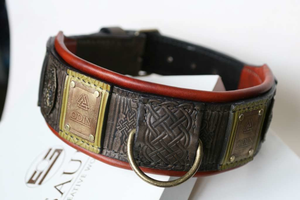 Custom engraved big dog collar Odin by Workshop Sauri