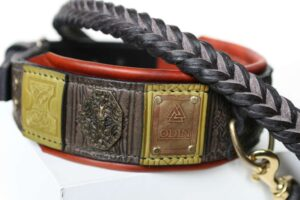 Custom engraved big dog collar and leash by Workshop Sauri