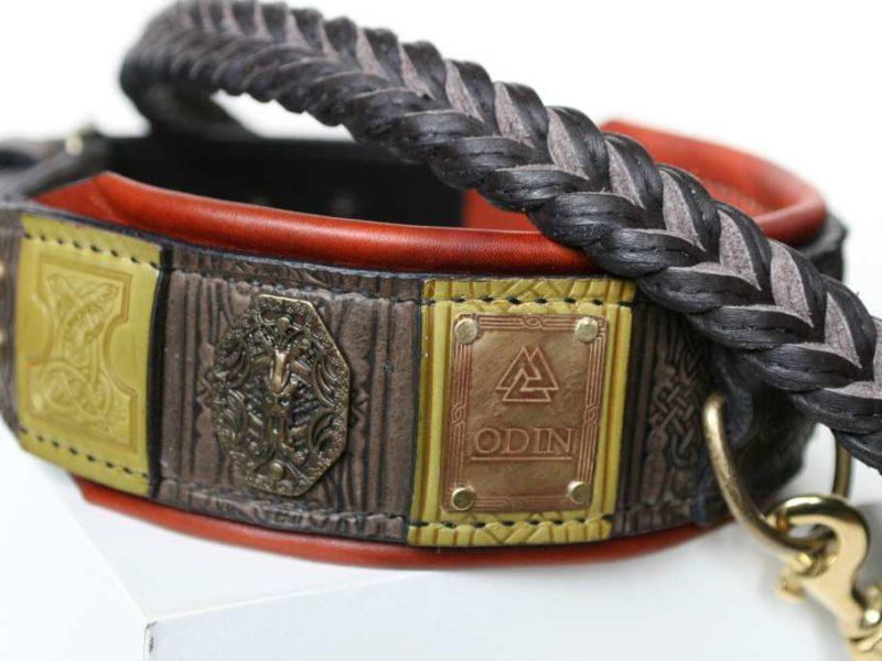 Custom engraved big dog collar and leash by Workshop Sauri