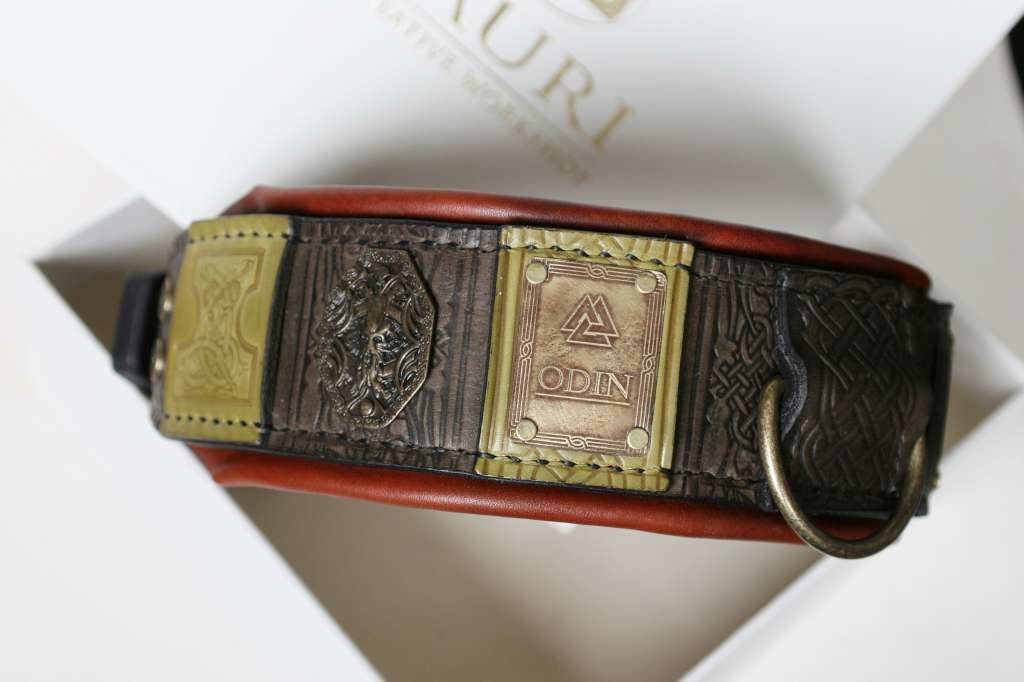 Odin custom engraved big dog collar handmade by Workshop Sauri