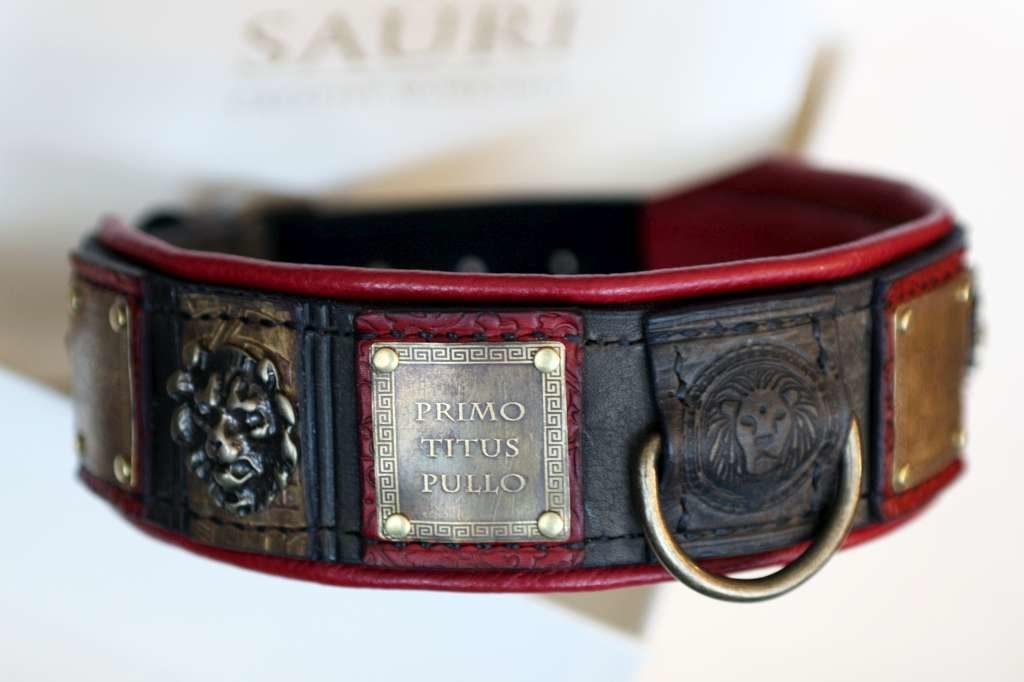 Roman inspired dog collar by Workshop Sauri