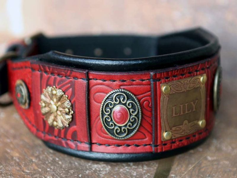 Byzantine Afghan hound leather collar by Workshop Sauri