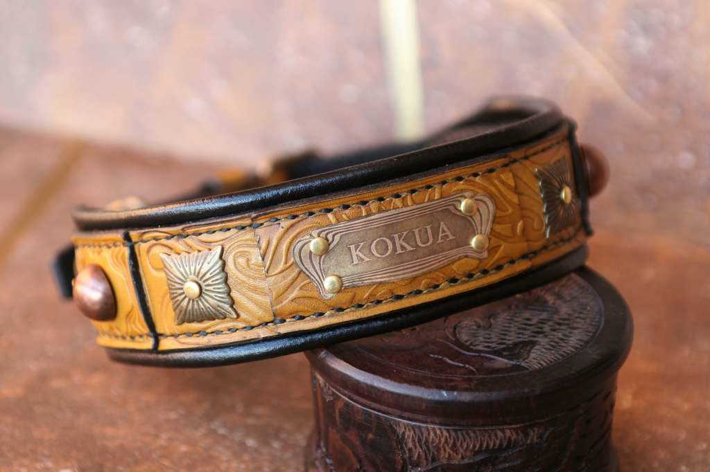 Padded leather dog collar Terra by Workshop Sauri