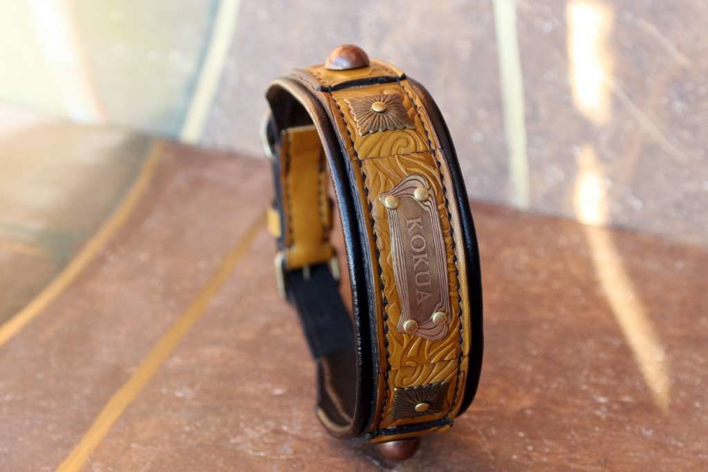 Padded leather dog collar Terra designed by Workshop Sauri