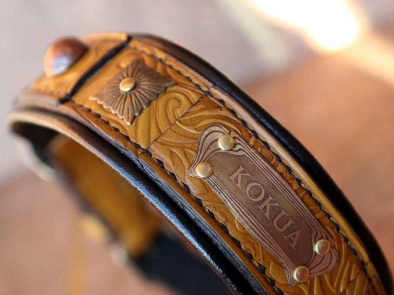 Padded leather dog collar Terra by Workshop Sauri