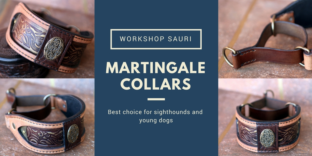 Martingale collar by Workshop Sauri