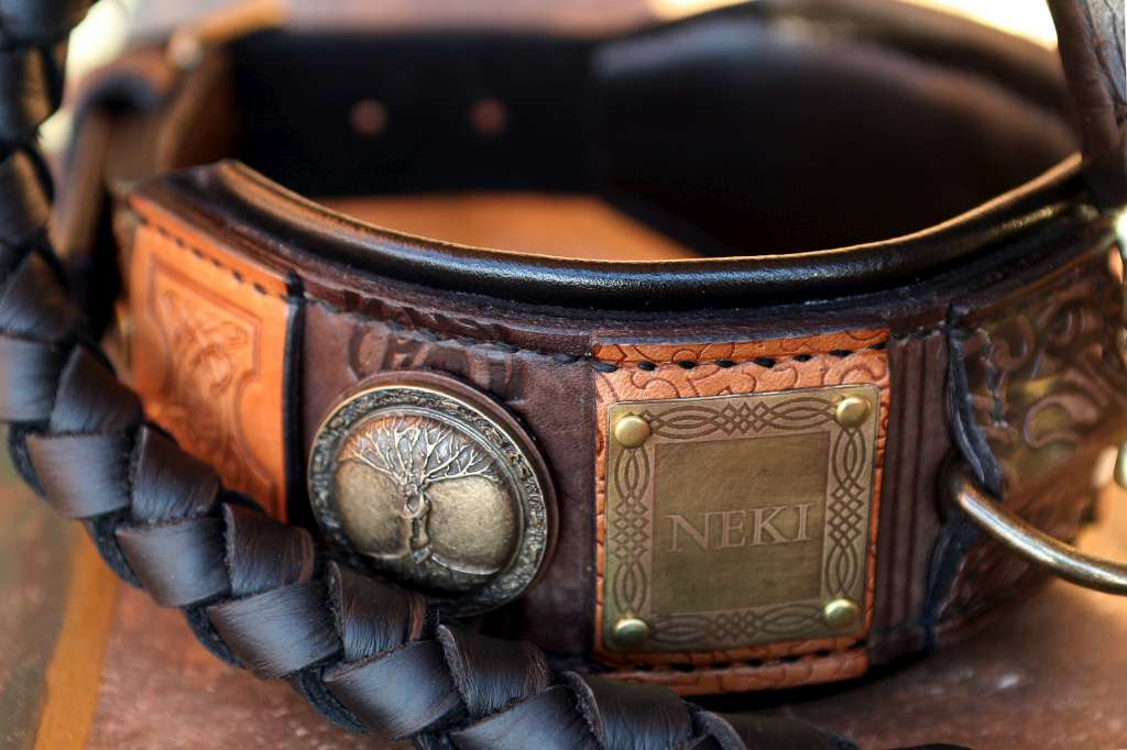 Imperial Ii Personalized Dog Collar With Black Leather