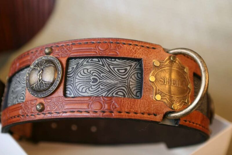 Big dog collar with vintage nameplate by Workshop Sauri