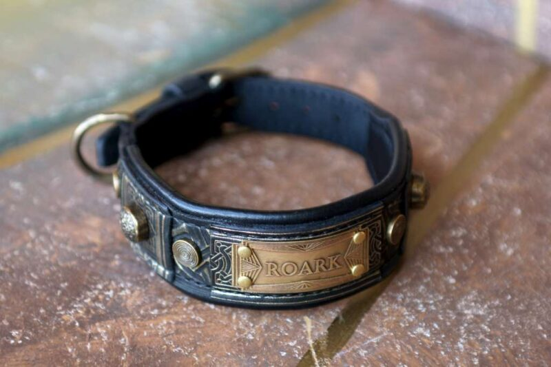 Black leather dog collar with nameplate by Workshop Sauri
