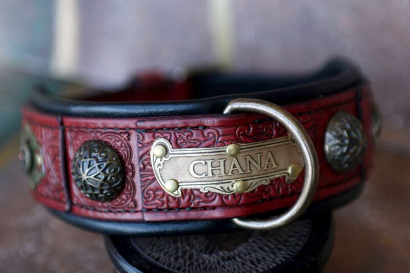 Riveted personalized red leather dog collar CHANDI by Workshop Sauri