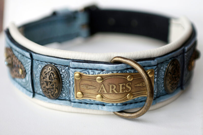 Blue dog collar with rhinestones and beige leather padding