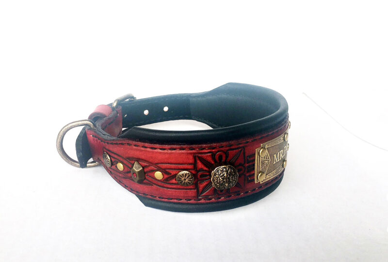 Ornamented medium dog collar with name by Workshop Sauri