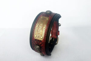 Unique medium dog collar with nameplate by Workshop Sauri